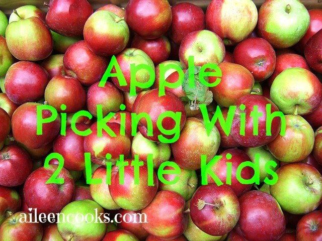 apple picking with 2 little kids