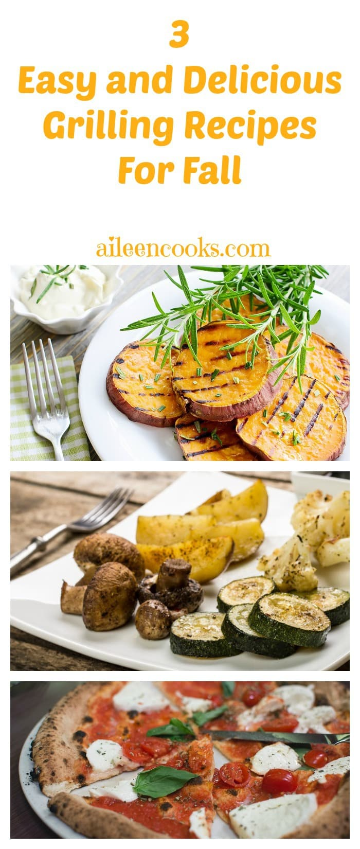Fall Grilling Recipes from aileencooks.com