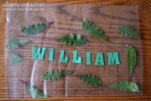 Fall Leaf Placemats are a fun Fall preschooler activity that incorporates nature and name recognition. Post from aileencooks.com.