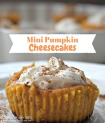 Mini pumpkin cheesecakes topped with whipped cream and cinnamon on a white platter.