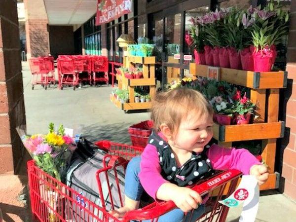 baby-shopping-cart-trader-joes