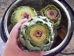 Three raw artichokes in an instant pot. Once is in the process of being placed inside.