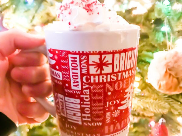 A hand holding the completed peppermint hot chocolate recipe in a red and white mug and in front of a lit Christmas tree.