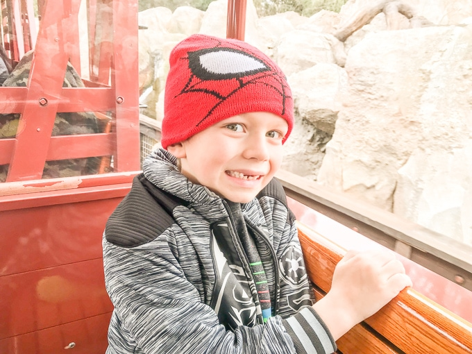 A little boy in a spider man hat, riding the Disneyland Railroad at Disneyland in Winter.