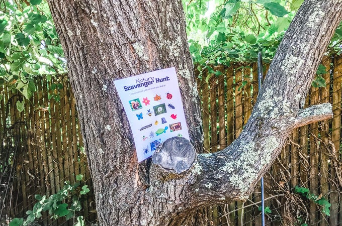 Nature Scavenger Hunt Printable propped up on a tree.