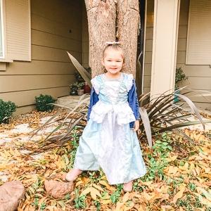 Little girl in Cinderella dress