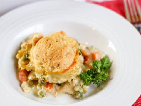Instant Pot Chicken Pot Pie Recipe