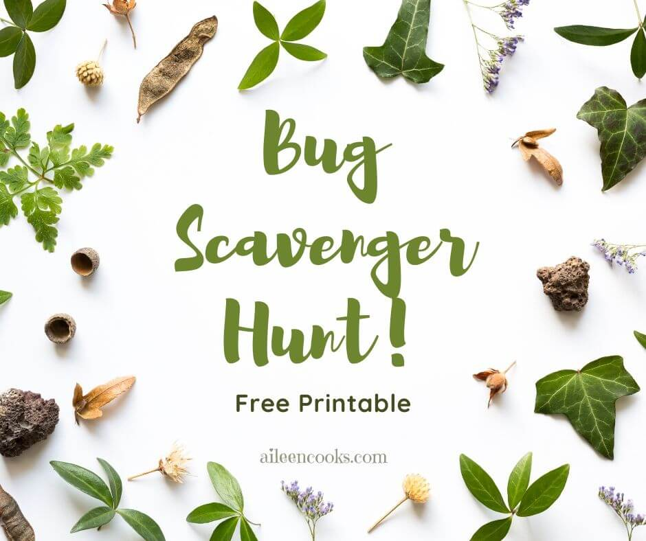 "An image of leaves and flowers with the words ""bug scavenger hunt"" in the center with green lettering."