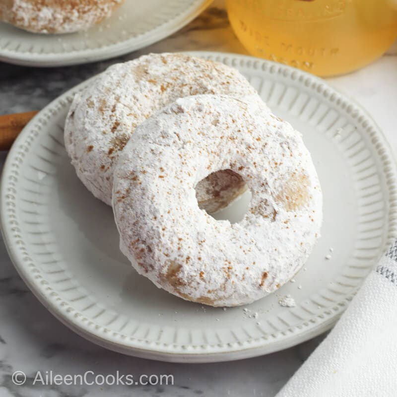 A white plate with two powdered sugar apple cider donuts.
