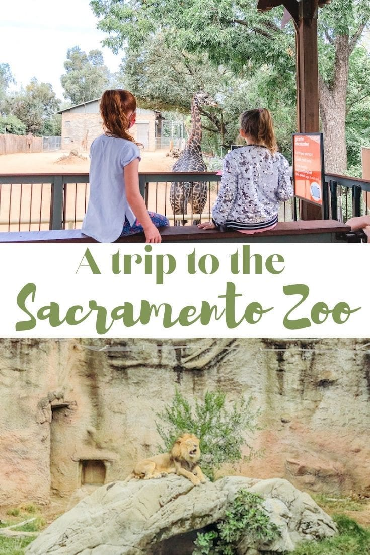 """Collage photo of pictures at the zoo with the words """"A trip to the Sacramento Zoo"""" in green lettering."""