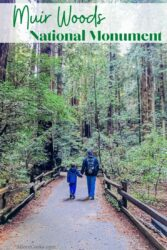 """A man and son walking on a trail with the words """"Muir Woods national monument"""" in green lettering at the top of the photo."""