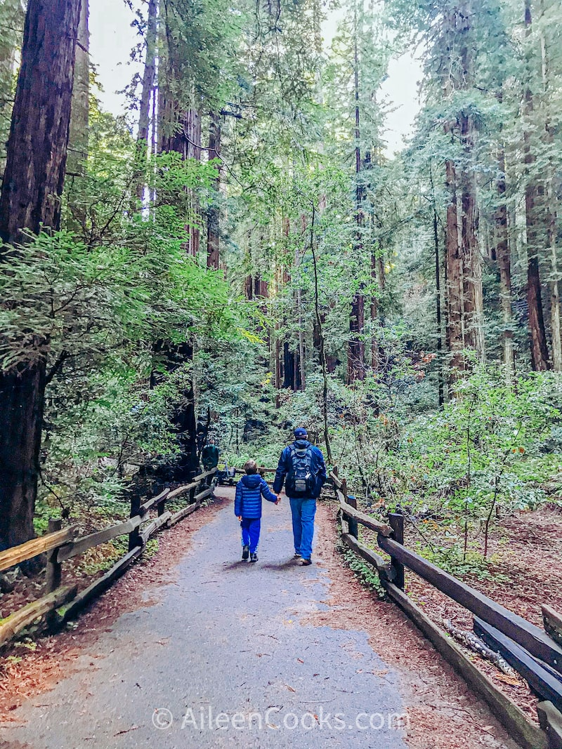 A father and son holding hands and walking among a grove of Redwood Trees.