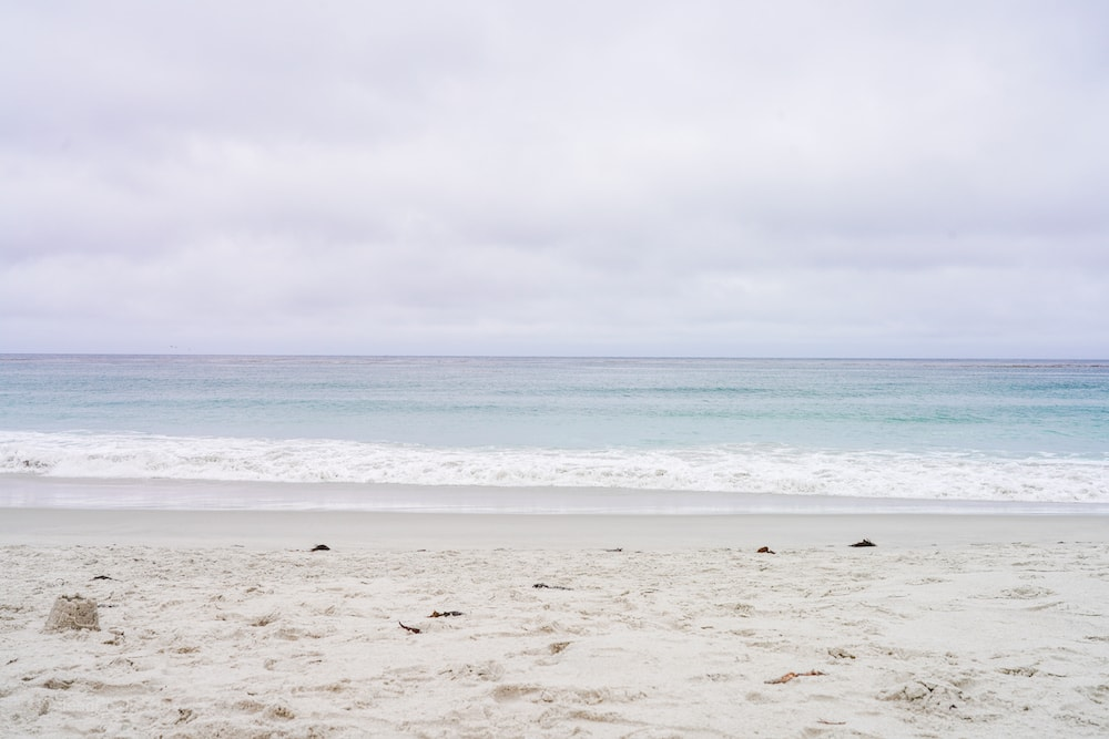 A view of the ocean and sand at Carmel beach.