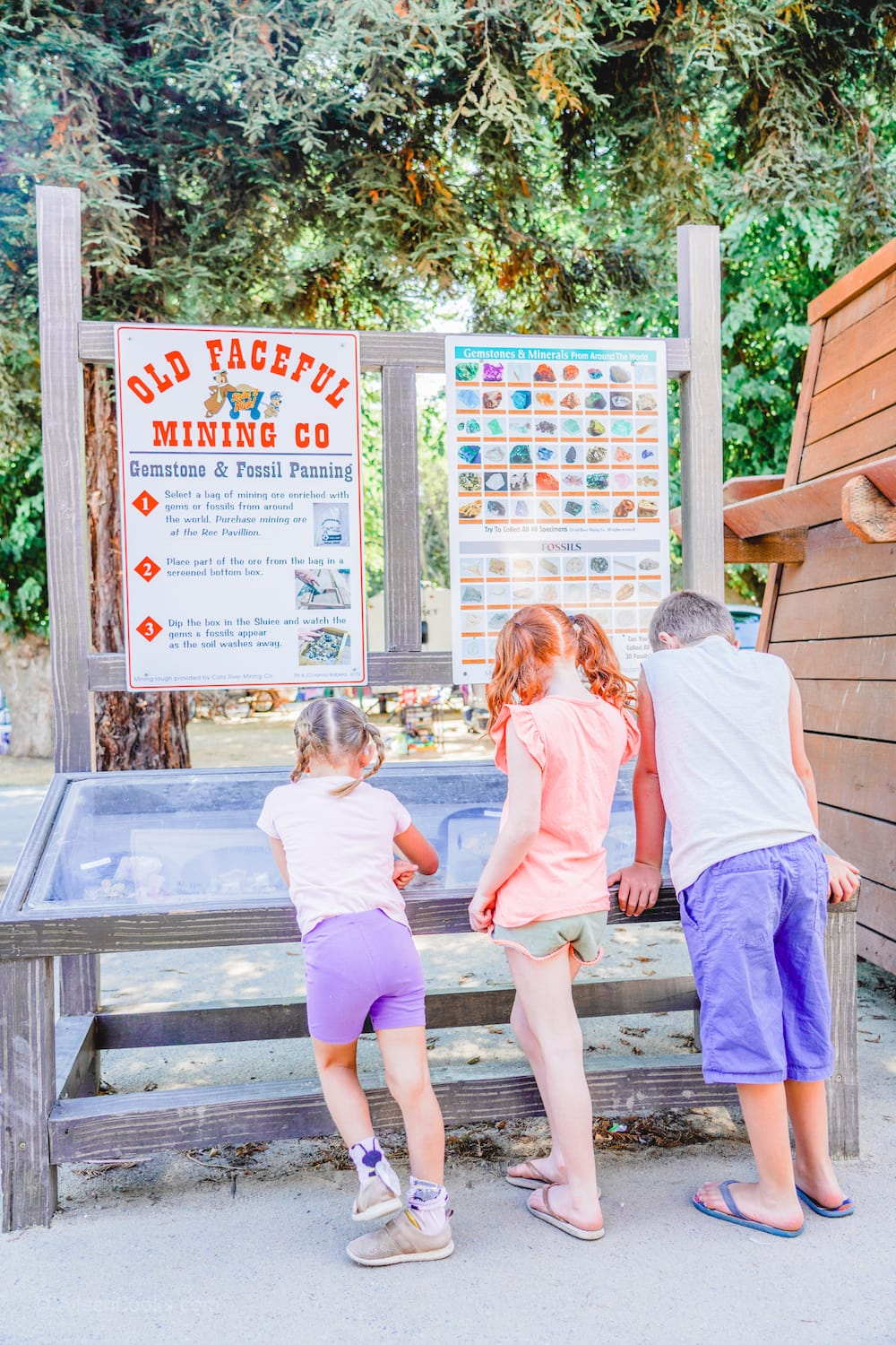 Three kids with their backs turned, looking at the gems at the gem mining station at Tower Park.